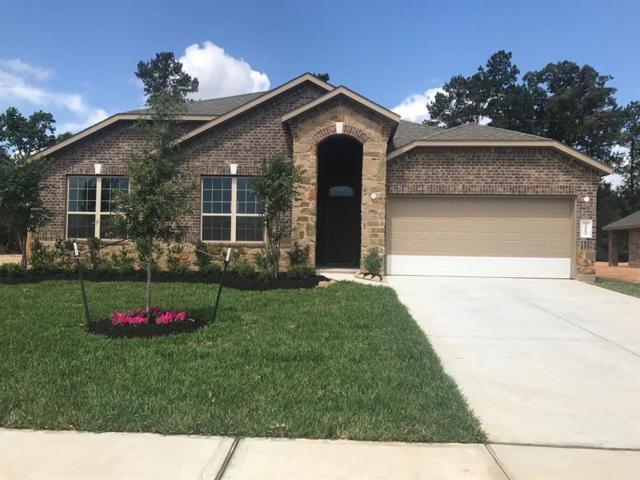 31003 Roanoak Woods Drive, Tomball, TX 77375 (MLS #91273522) :: Keller Williams Realty