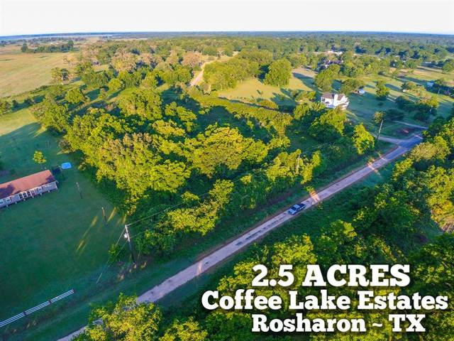 Lot 232 County Road 528, Rosharon, TX 77583 (MLS #91305605) :: Connect Realty