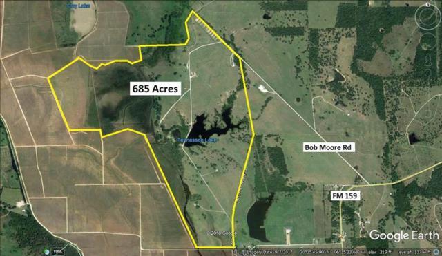 9000 Bob Moore Pvt Road, Millican, TX 77866 (MLS #91307596) :: The Heyl Group at Keller Williams