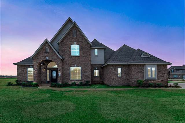 25759 Red Shadow Lane, Hockley, TX 77447 (MLS #91368532) :: The Bly Team