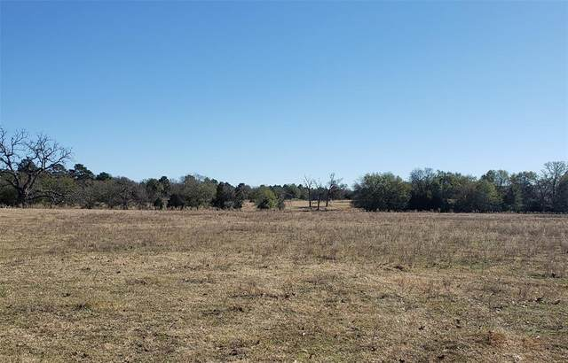 330 County Rd 691, Teague, TX 75860 (MLS #91475011) :: Christy Buck Team