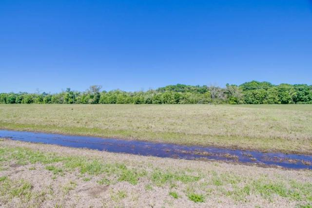 16626 Hamill Drive, Rosharon, TX 77583 (MLS #91493487) :: The SOLD by George Team