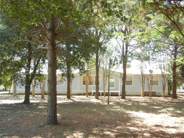 38805 Menke Road, Hempstead, TX 77445 (MLS #91516851) :: The SOLD by George Team