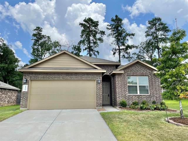 11506 Castle Nugent Court, Conroe, TX 77304 (MLS #91538442) :: The Bly Team