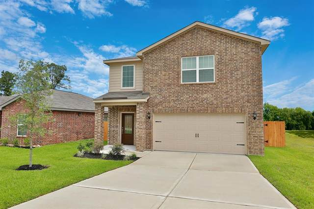 20718 Nala Bear Drive, Hockley, TX 77447 (MLS #91543799) :: The Sansone Group