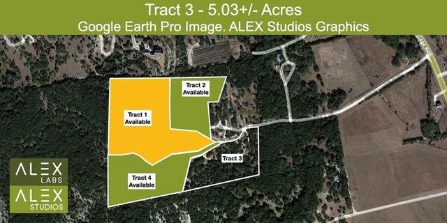 28155C Boerne Stage Road, Boerne, TX 78006 (MLS #91545336) :: Parodi Group Real Estate