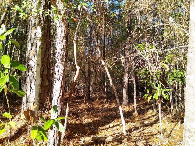 LOT 138 Lost Lakes, New Caney, TX 77357 (MLS #91580492) :: Ellison Real Estate Team
