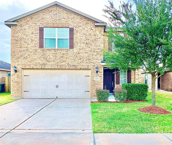 11218 Hall Ranch Court, Houston, TX 77075 (MLS #91602313) :: Ellison Real Estate Team