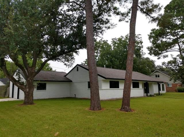 5703 Cerritos Drive, Houston, TX 77035 (MLS #91640026) :: Christy Buck Team