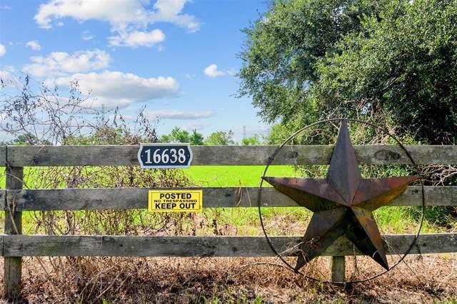 16638 Warren Ranch Road, Hockley, TX 77447 (MLS #91659516) :: The Bly Team
