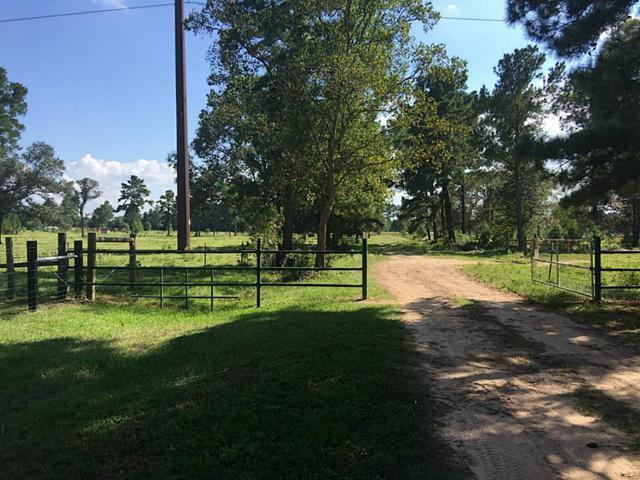 0 Holub Road, Hockley, TX 77447 (MLS #9176241) :: Christy Buck Team