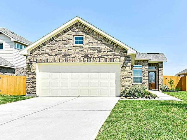 10315 Kern Canyon Drive, Rosharon, TX 77583 (MLS #9182626) :: The SOLD by George Team