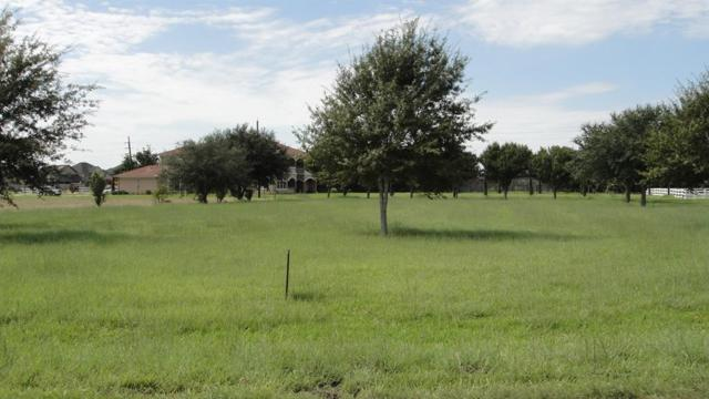 5511 Bridlewood Drive, Richmond, TX 77469 (MLS #91845304) :: Texas Home Shop Realty