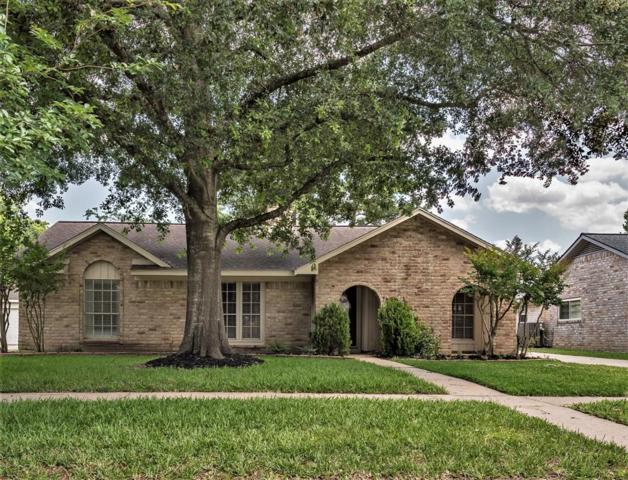 21207 Park Tree Lane, Katy, TX 77450 (MLS #91923208) :: Connect Realty