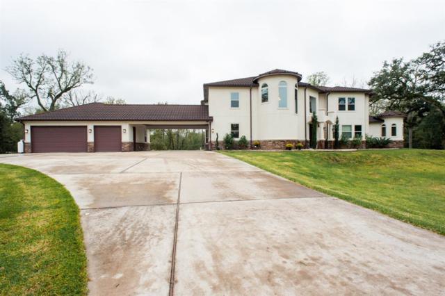 1515 China Grove Drive, Rosharon, TX 77583 (MLS #91931433) :: Caskey Realty