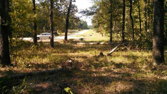 67 N Forest Drive, Huntsville, TX 77340 (MLS #91945096) :: Mari Realty