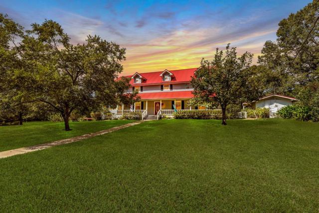 362 Marina Place, Trinity, TX 75862 (MLS #91953517) :: Texas Home Shop Realty