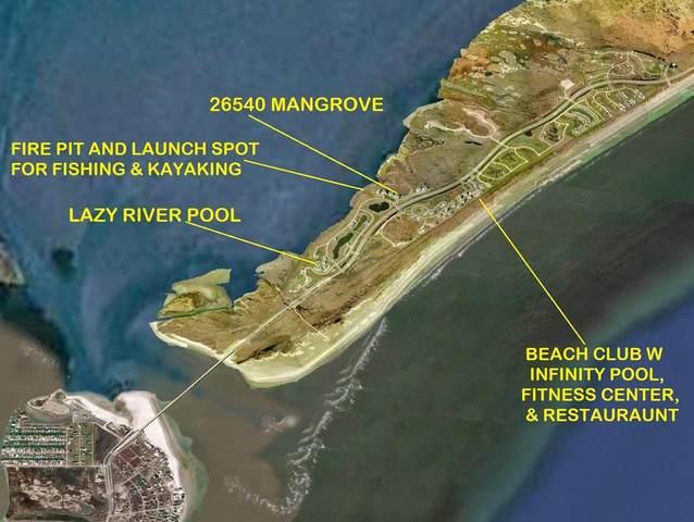 26540 Mangrove Drive #303, Galveston, TX 77554 (MLS #92042309) :: Ellison Real Estate Team