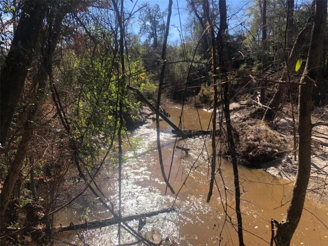 12815 N Highway 96, Brookeland, TX 75931 (MLS #92124245) :: Magnolia Realty