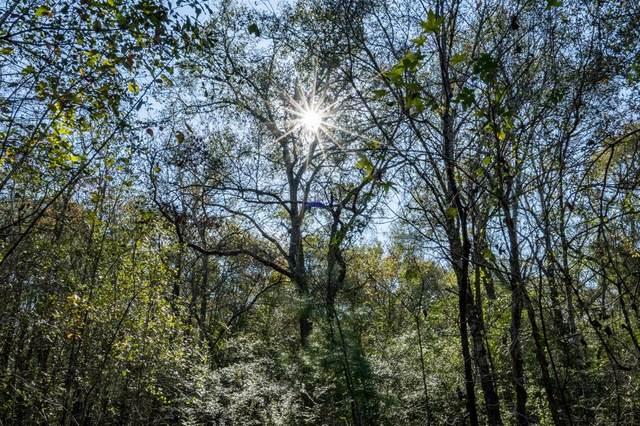 1011 Hunters Creek Way, Hockley, TX 77447 (MLS #92178607) :: Michele Harmon Team