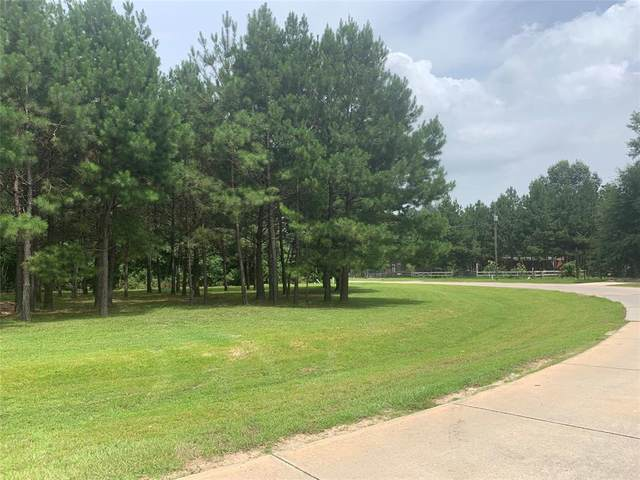 223 County Road 3405, Cleveland, TX 77327 (MLS #9221437) :: Ellison Real Estate Team