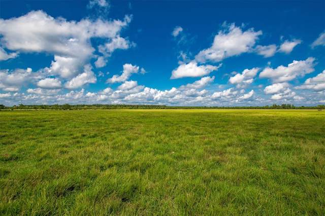 Tract 5 County Road 2285, Tarkington, TX 77327 (MLS #92234547) :: The Freund Group
