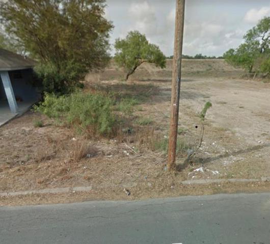 2113 El Rancho Avenue, Mcallen, TX 78503 (MLS #92282094) :: Magnolia Realty