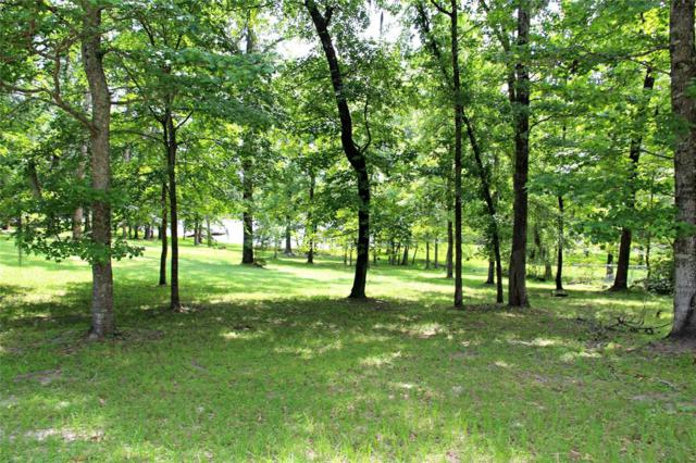 Lot 31 Red Oak, Trinity, TX 75862 (MLS #92299242) :: The Heyl Group at Keller Williams