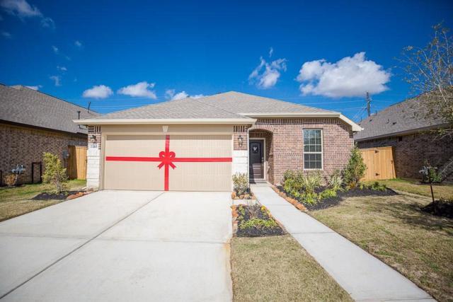 23102 Tindarey Falls Lane, Katy, TX 77493 (MLS #92341162) :: Caskey Realty