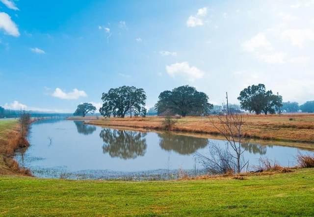 1614 Lakeland Circle, Rosharon, TX 77583 (MLS #92356922) :: Green Residential