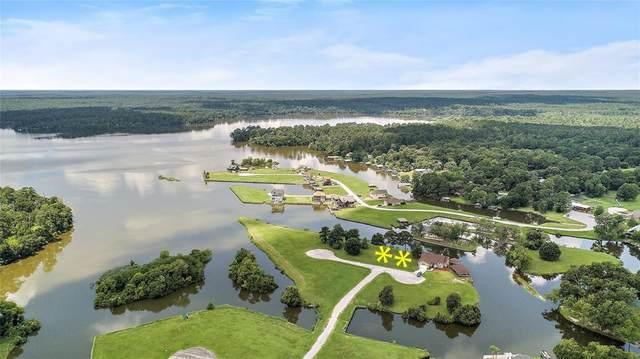 LOTS 5&6 Peninsula Point, Huntsville, TX 77340 (MLS #92366155) :: Green Residential