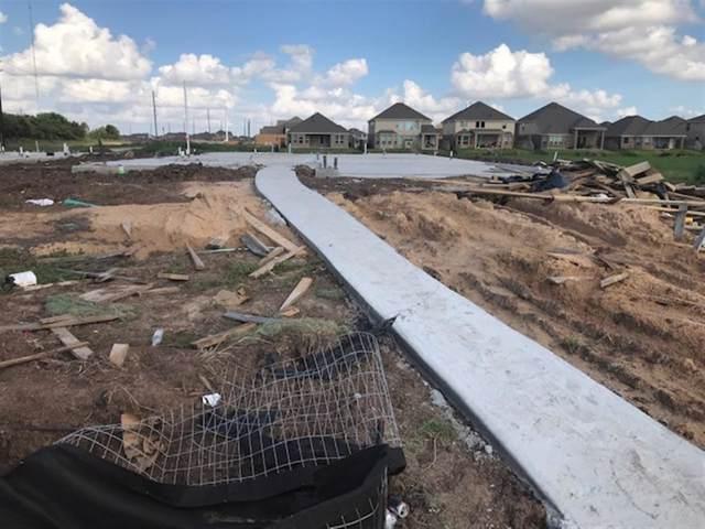 2207 Bal Harbour, Missouri City, TX 77459 (MLS #92421672) :: Texas Home Shop Realty