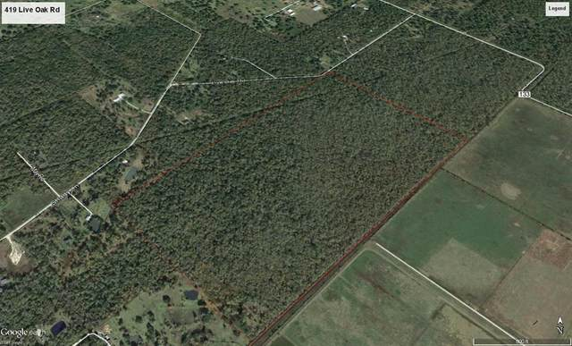 419 County Road 136 Live Oak Rd, Sweeny, TX 77480 (MLS #92578724) :: Connect Realty