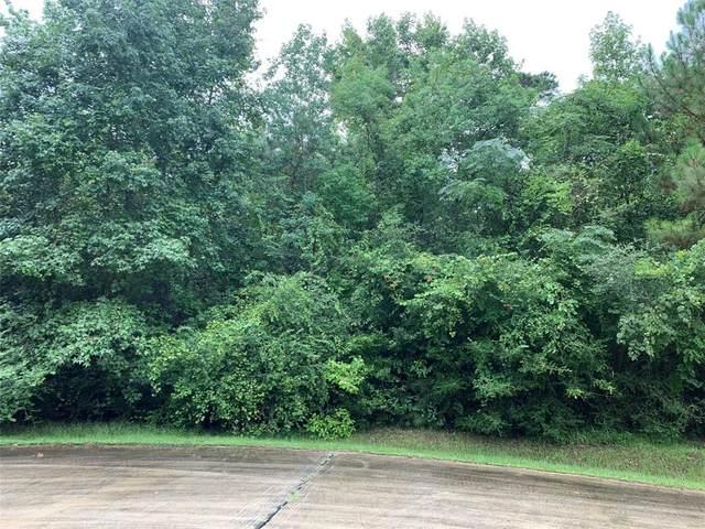 25011 Rhett Butler Court, Tomball, TX 77375 (MLS #92586040) :: Green Residential