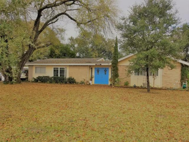 3307 Pecha Lane, Rosenberg, TX 77471 (MLS #92595025) :: JL Realty Team at Coldwell Banker, United