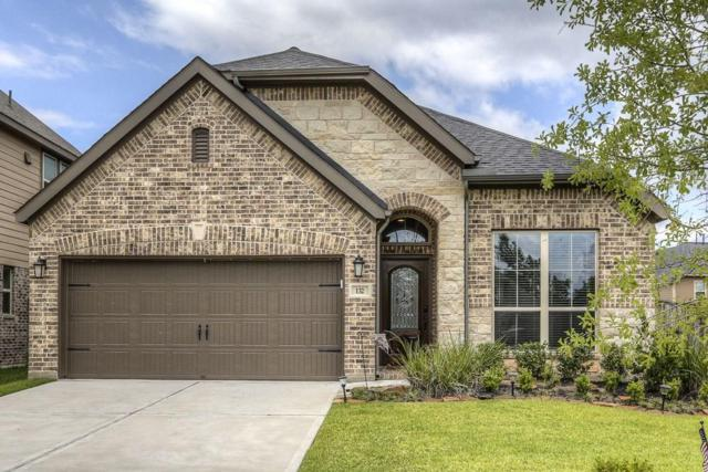 132 Grinnell Trail, Montgomery, TX 77316 (MLS #92608022) :: Connect Realty