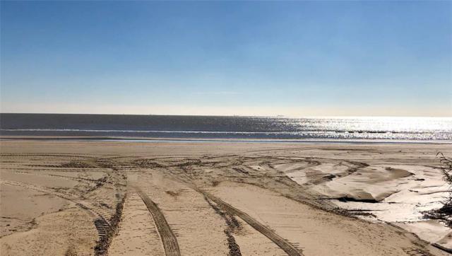 2005 Seaside, Crystal Beach, TX 77650 (MLS #92612800) :: The SOLD by George Team