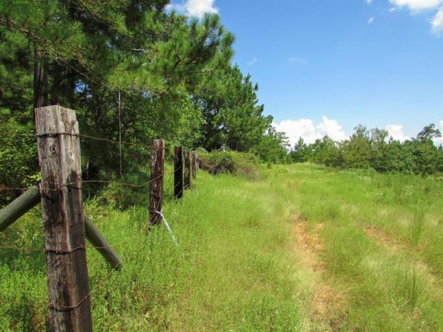 18 Ac Cedar Creek Road, Coldspring, TX 77331 (MLS #92666326) :: The Heyl Group at Keller Williams