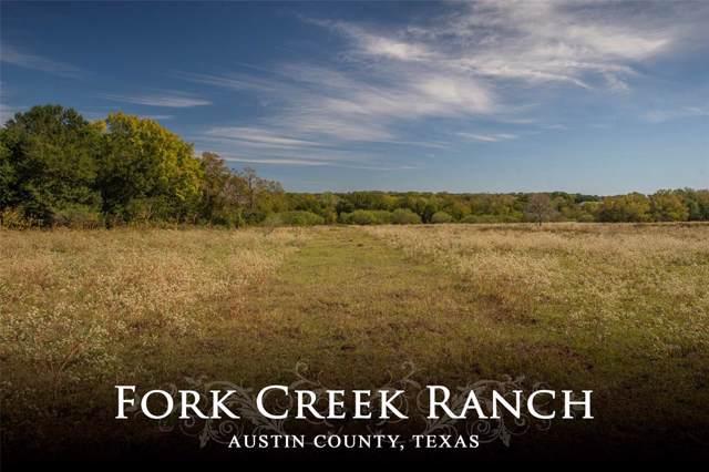 1400 Kiemsteadt Road, Chappell Hill, TX 77426 (MLS #92688224) :: TEXdot Realtors, Inc.