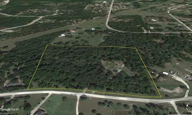 163 Acorn Hill Drive, Huntsville, TX 77320 (MLS #92722681) :: The Sansone Group