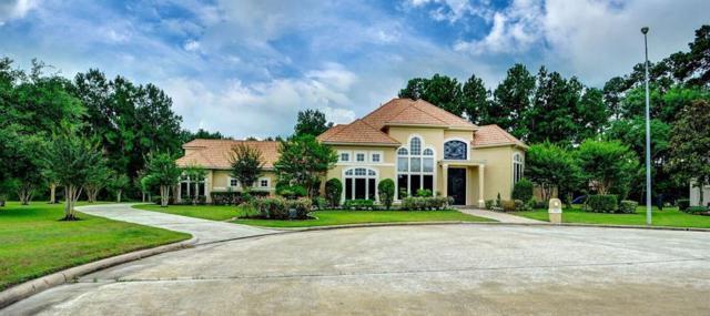 6531 Wilding Wimbledon Court, Spring, TX 77379 (MLS #9273262) :: Giorgi Real Estate Group