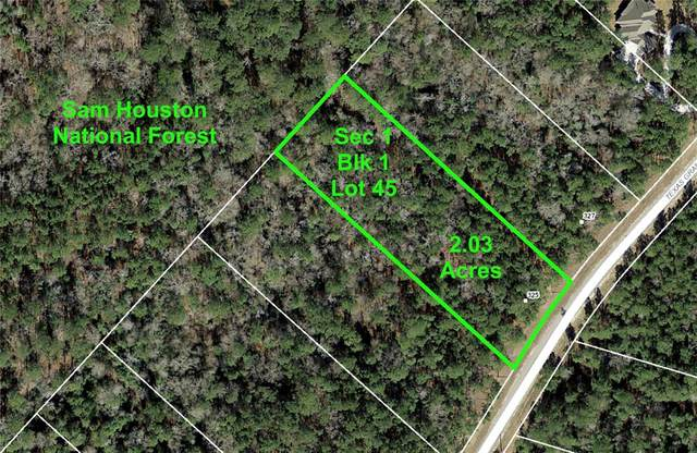 1-1-45 Texas Grand Road, Huntsville, TX 77340 (MLS #92856630) :: The SOLD by George Team
