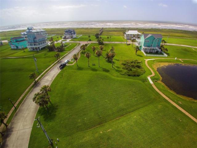 4114 Sandhill Crane Way, Galveston, TX 77554 (MLS #92881847) :: The Queen Team
