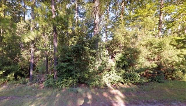 0 Devlin Drive, Sam Rayburn, TX 77327 (MLS #92902319) :: Ellison Real Estate Team