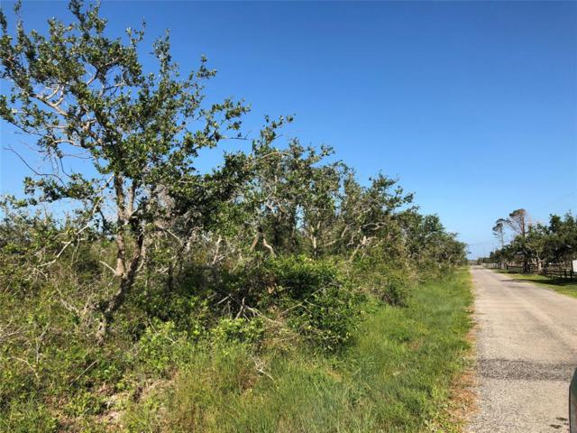 428 N Walker Road, Rockport, TX 78382 (MLS #92943978) :: Caskey Realty