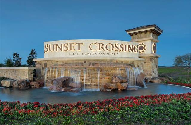 1818 Raven Vista Drive, Rosenberg, TX 77469 (MLS #93065222) :: CORE Realty