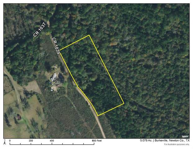 0 Cr 1039, Burkeville, TX 75932 (MLS #93096686) :: The SOLD by George Team