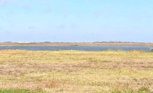 TBD Bay Drive, Palacios, TX 77465 (MLS #93162953) :: The Jill Smith Team