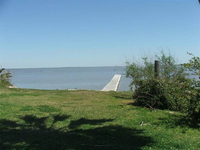 1290 Yacht Basin, Gilchrist, TX 77617 (MLS #93265328) :: The Heyl Group at Keller Williams