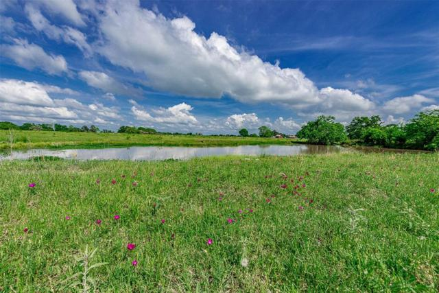 00 N Old Springfield Rd, North Zulch, TX 77872 (MLS #93536329) :: Texas Home Shop Realty